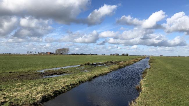 Ruim 4100 hectare veengrond in Fryslân geschikt voor CO2-certificaten via Valuta voor Veen
