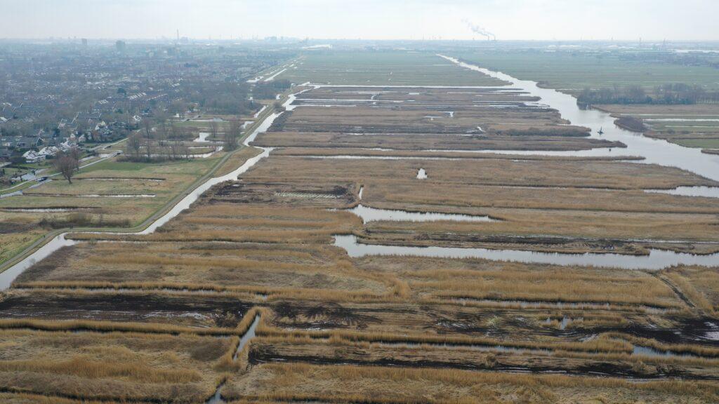 Landelijke primeur: peilverhoging natuurgebied Westzijderveld in Noord-Holland levert CO₂ -certificaten op